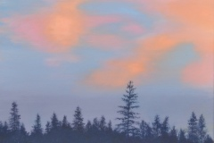 After Sunset near the Apline Lodge above Westcliff No. 2.  Oil on canvass, 18x24, 2013