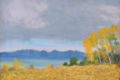 Aspens with a Distant Storm 2o14 Oil on Linen 9x12