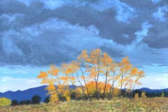 Colorado-Trees-Oil on Linen 30×40