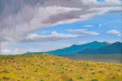 Light-on-a-Slope-in-Colorado-2014 Oil on Linen 9x12