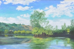 View from a Canoe on the Dordogne River 30x40
